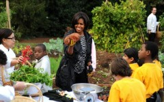 Michelle Obama's Potatoes, Not So Sweet?