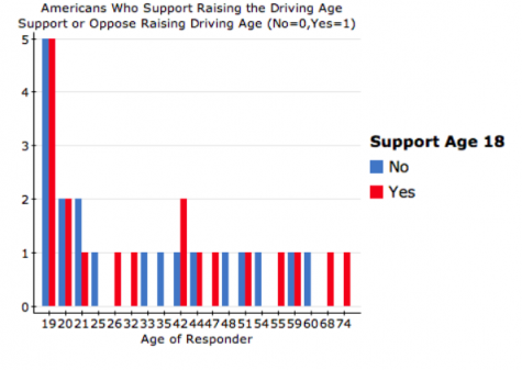 Should the Driving Age be Raised?
